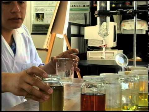 Resultado de imagen para pruebas de laboratorio de aceites esenciales