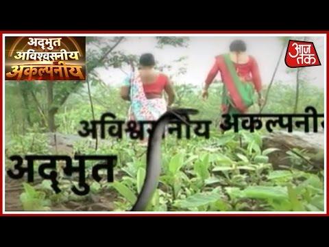 Adbhut Avishvasniya Akalpneeya: Do Vish Kanyas (Poison Girls) Still Exist?