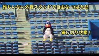 誰もいない外野スタンドで自由な つば九郎 thumbnail