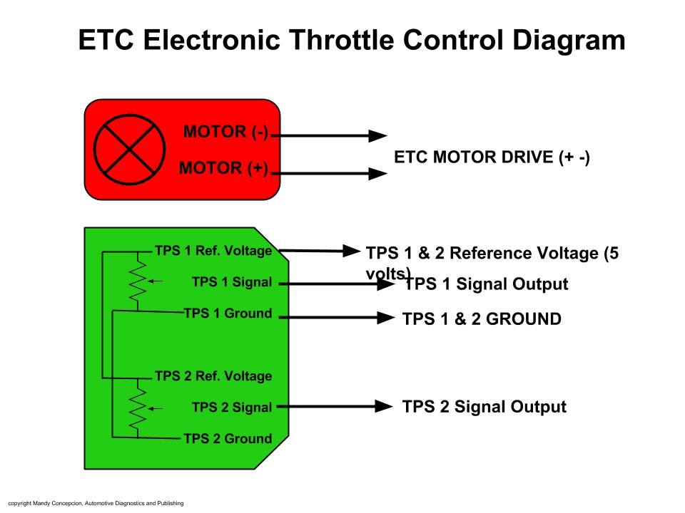 Electronic Throttle Motor Wires Identification on