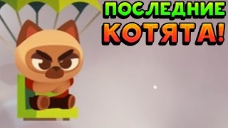ПОСЛЕДНИЕ КОТЯТА! - CATS: Crash Arena Turbo Stars
