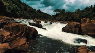 KERALA TRAVEL VLOG | Exploring Munnar and Allepey