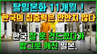 탈일본화 11개월.! 한국의 집중력은 만만치 않다. 한…