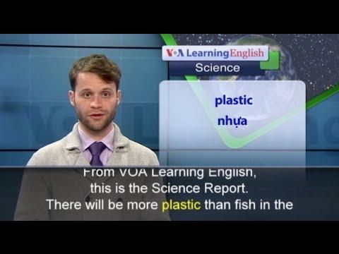 Phát âm chuẩn - Anh ngữ đặc biệt: Ocean, Plastics and Fish (VOA)