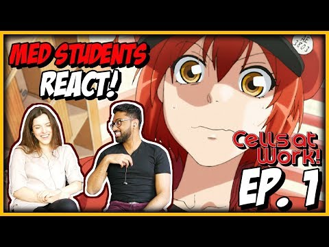 MED STUDENTS REACT TO CELLS AT WORK! EPISODE 1 REACTION