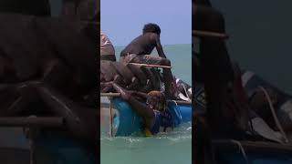 Man Spears His Own Boat! #blackas #shorts