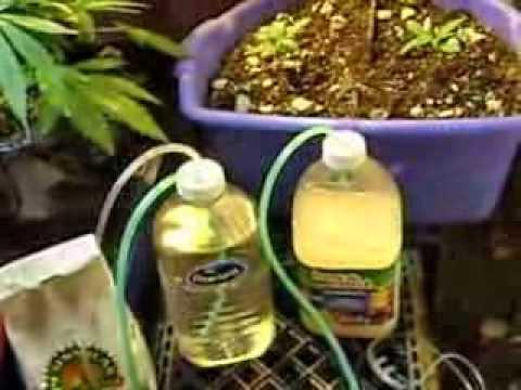 Cheap DIY Indoor Co2 garden generator