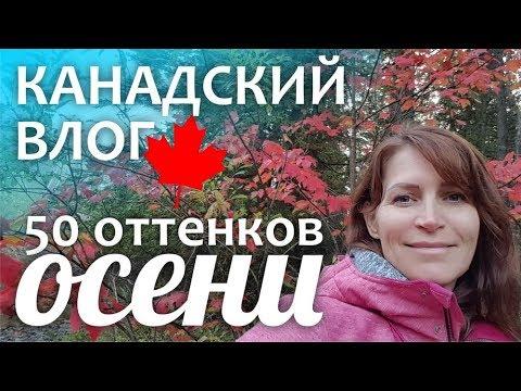 Тренинговый портал Украины. Тренинги и семинары Одессы