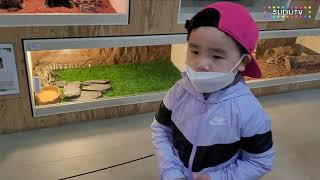 어린이날 영암곤충박물관 다녀왔습니다. 곤충류 직접 만져…