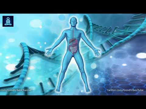 Whole Body Detoxification (3 Hours)➤ Clear Toxin from Body and Cells ➤Theta Binaural Beat