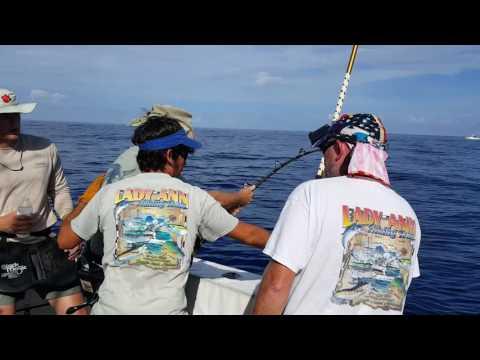 Dauphin island gulf of Mexico 18