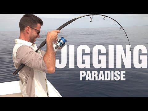 Vertical Jigging PARADISE!