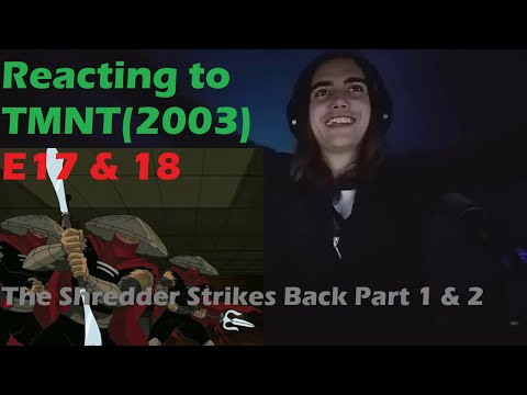 tmnt 2003 shredder strikes back