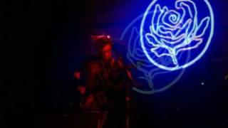 Ryan Adams & The Cardinals - Goodnight Rose & The Sun Also Sets