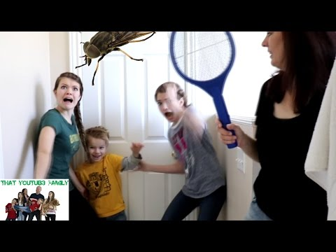 Attack of the Horsefly! / That YouTub3 Family