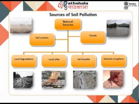Soil Pollution:Fertilizers and Pesticides (CHE )
