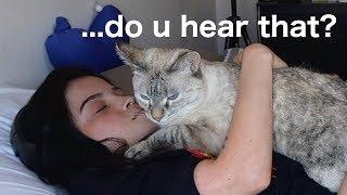 reacting to ASMR but i'm half deaf