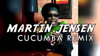DJ Martin Jensen - Cucumba Remix (loop version)