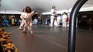 Martial arts school demonstrations at the etnia negara festival