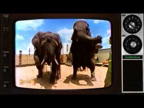 1985 - African Lion Safari