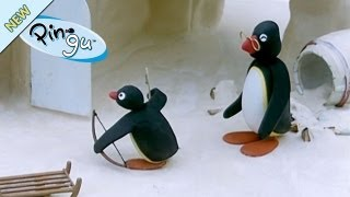Pingu - Pingu de boogschutter