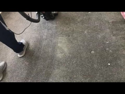 ML Luxury Cleaning: Carpet Dust Removal