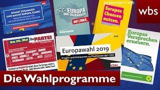 Europawahl - Was steht in den Wahlprogrammen? | Rechtsanwalt Christian Solmecke