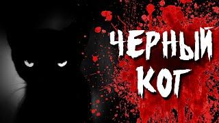 Страшная история на ночь - Черный кот(Если вам понравилось данное видео, ставьте лайк и подписывайтесь на канал, для того чтобы всегда быть в..., 2016-09-20T12:25:10.000Z)