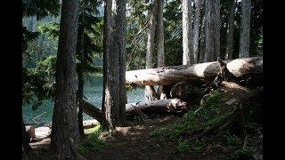 ФС - 75 у самотнього озера (Greenwater, Вашингтон)