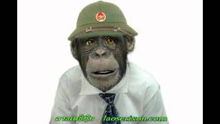 Monkey Talk ລິງປາກເປັນ