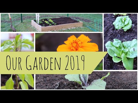 Our Vegetable Garden 2019 | Raised Garden Beds | Organic Gardening