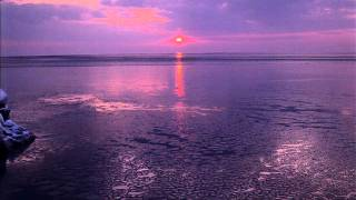 Moby - Natural Blues (Lulu Rouge Remix - Bill Brighton ReEdit)