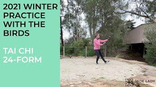 Tai Chi 24 Form Winter Practice