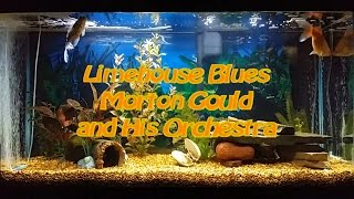 Limehouse Blues   Morton Gould and His Orchestra