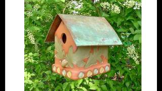 http://www.youtube.com/watch?v=KMrfVxDPfhw - I found this site where I found Bird House Plans and designs, pretty cool. I posted