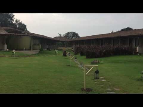 Asiatic Lion Lodge- Sasan Gir