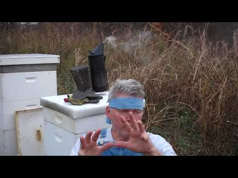 Beekeeping Early December