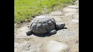 як зробити черепаху з гіпсу