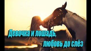 Истории из жизни. Девочка и лошадь, любовь до слёз. Преданный друг, до слез!