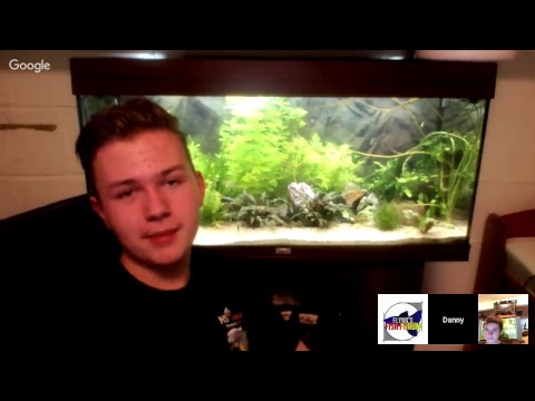 Flynn's Fish Forum LIVE- Episode 2- Community Tanks- Special Guest: Danny's Aquariums
