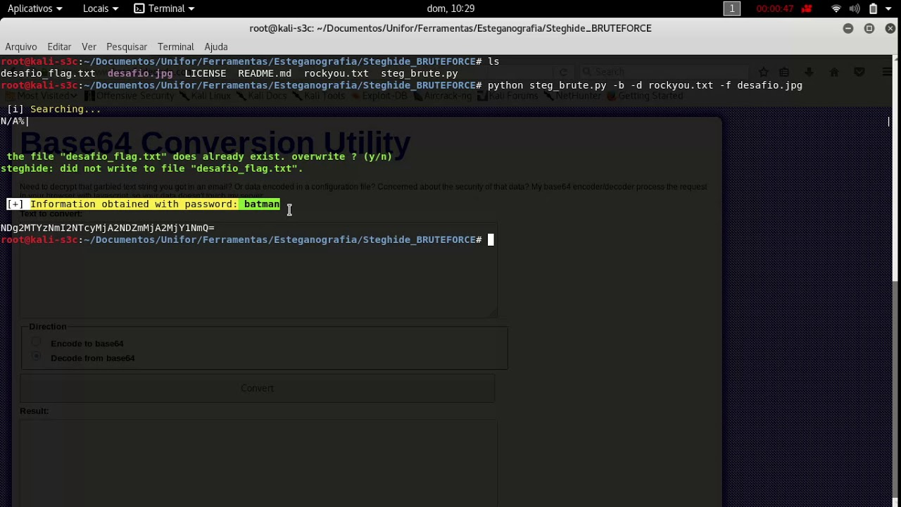 Brute Force using steg_brute py extract to BASE64 to HEX to ASCII