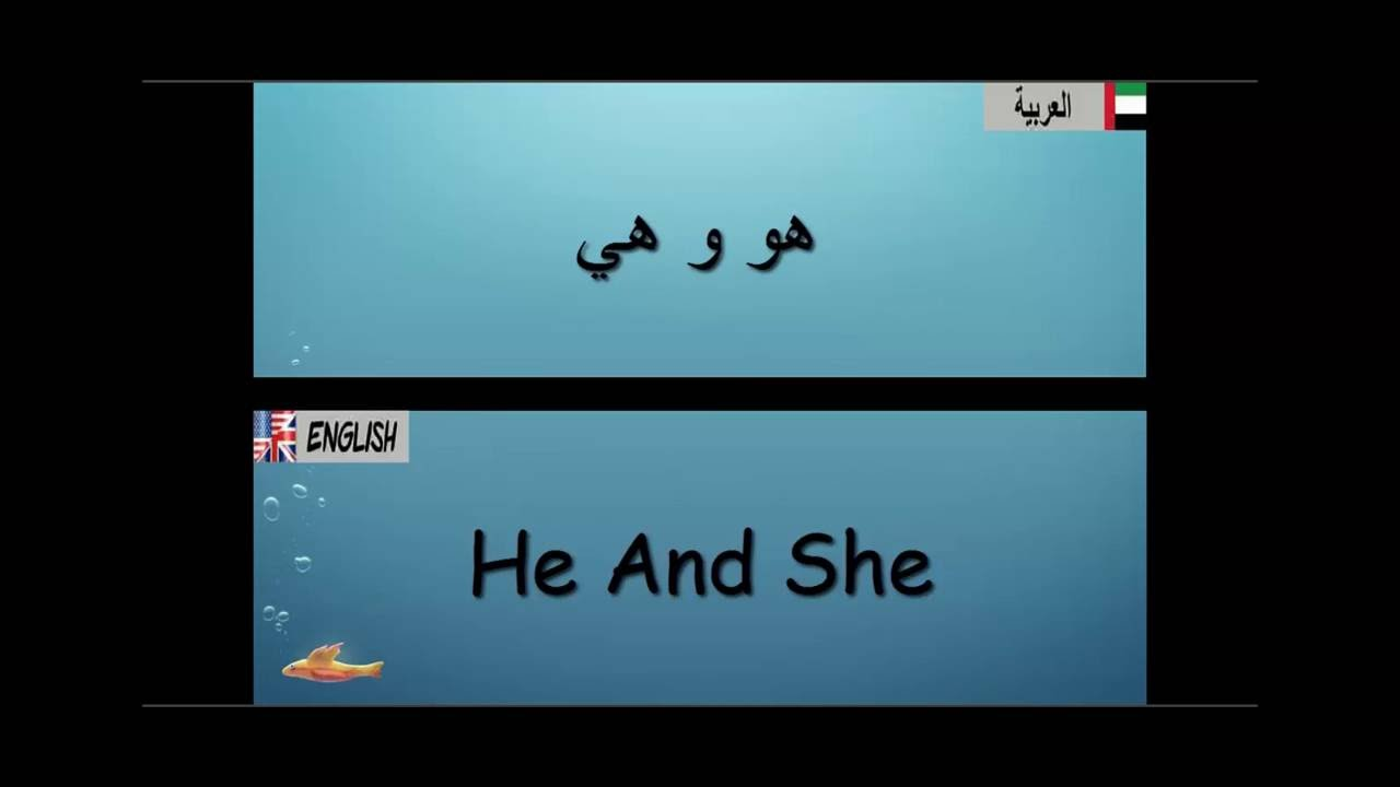 ta3lim logha english arabic