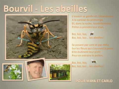 Les Abeilles Paroles Bourvil Video Lyric Greatsong