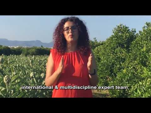 Organic Boosting Bio arabic