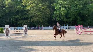 Elien, 10 yo, clear and 3rd in 2** GP 145 LR