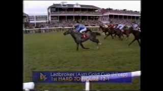 1993 Ladbrokes Ayr Gold Cup (Handicap)