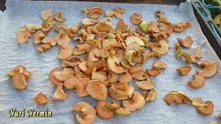 Сухофрукты из яблок в домашних условиях