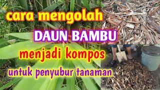 Download lagu Cara Mengolah Daun Bambu Menjadi Kompos || Untuk Penyubur Tanaman