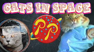 Cats in Space - Planetary Transmission #044