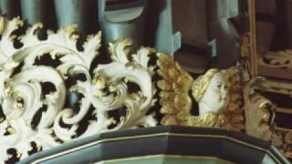 JS Bach : Herr Gott, nun schleuß den Himmel auf BWV 617  -  Orgue, François Lombard